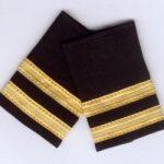 Insignia piloto privado
